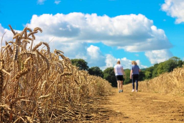 kez-and-rachel-cornfield