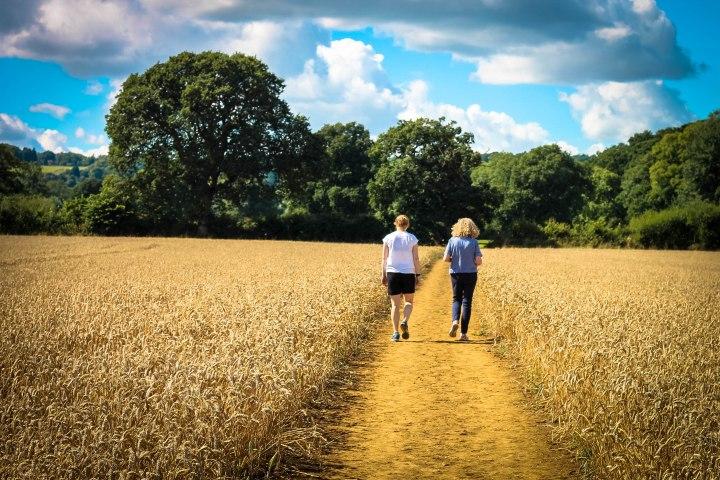 walking-up-cornfield